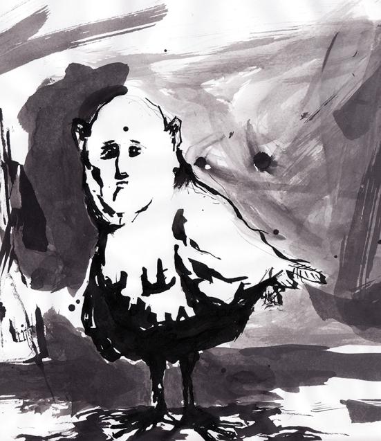 hombre paloma tinta2 chico