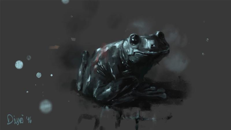 rana-sin-fondo